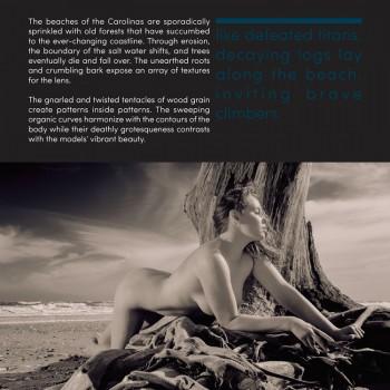 Coastal Nudes page 15