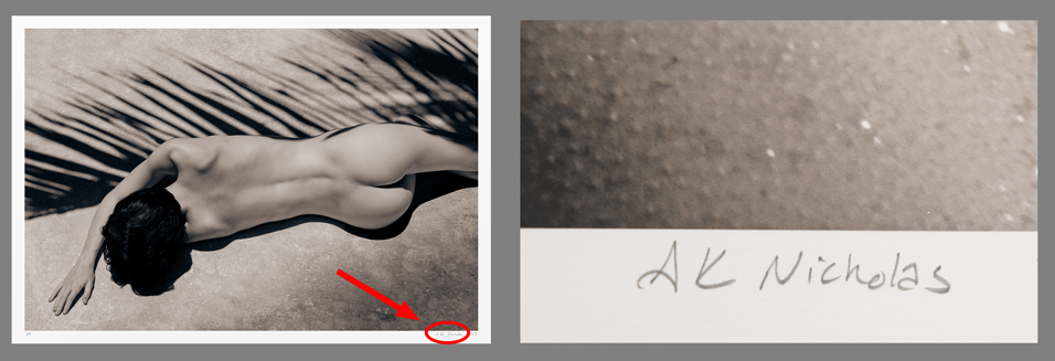 Limited edition art signed by the artist. Fine art nude photography.