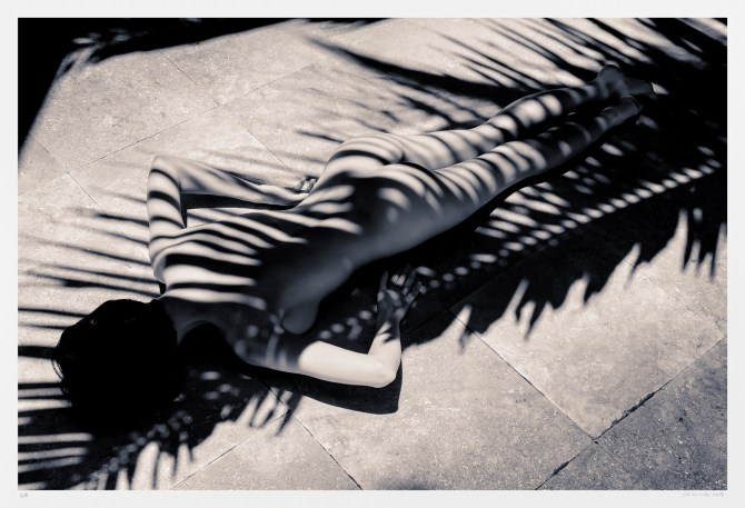 "Black-and-white art nude photography ""Palm Zebra"" original limited edition"