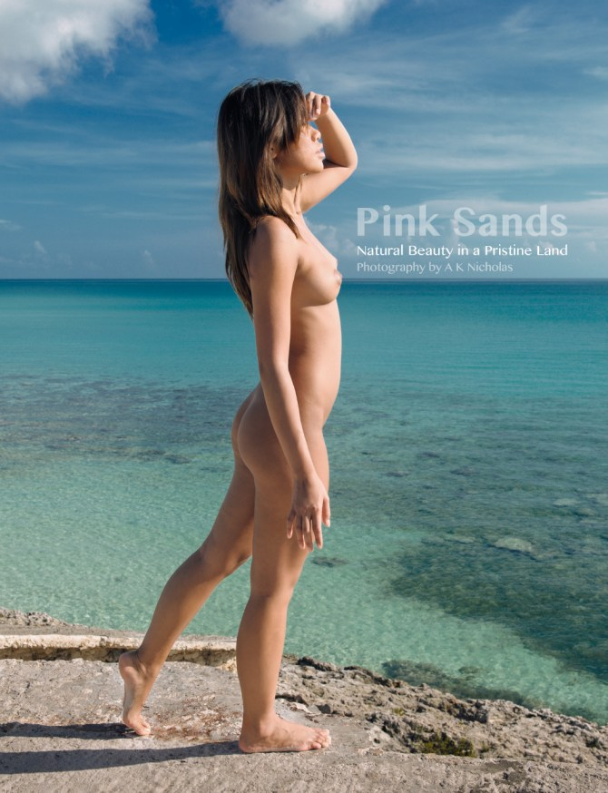 Pink Sands art nude photobook