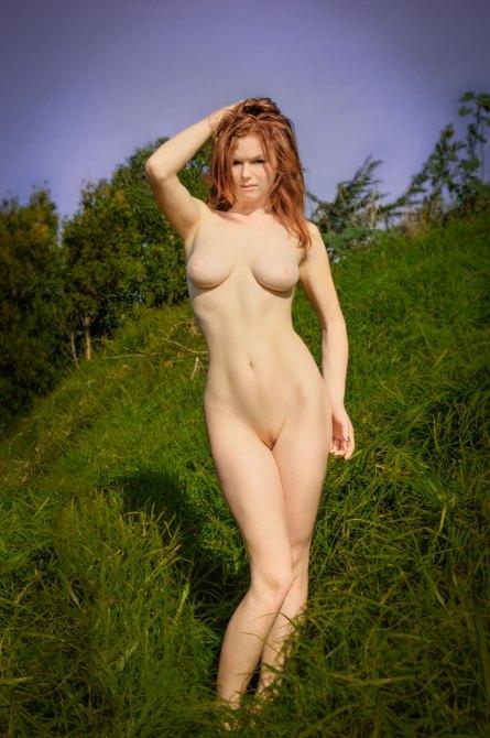 Ample Beauty pinup art nude photobook