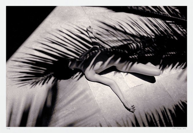 Classic black and white nude. Woman in tropical palm shadow, original art