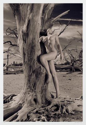 Fine art nude photography limited edition erotic art woman