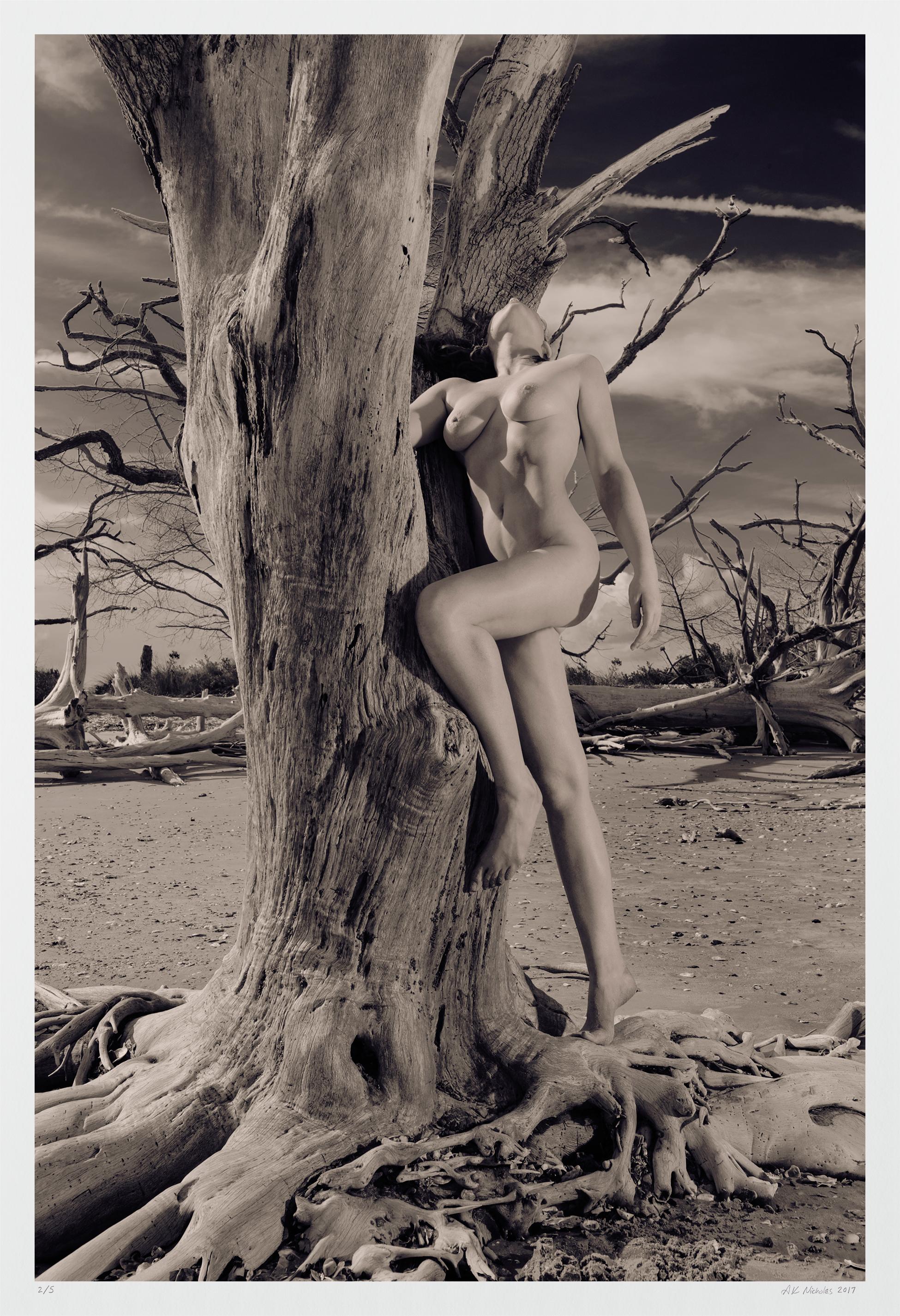 Artistic nude erotica